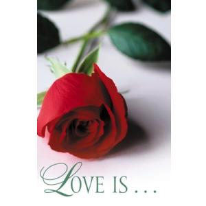 Gospel Tracts - Love Is... (Pkg. 25)